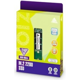 NEO FORZA SSD M.2 SATA 240GB NFN02, M.2 2280, SATA3, READ 560MB/s, WRITE 510MB/s, 3YW.