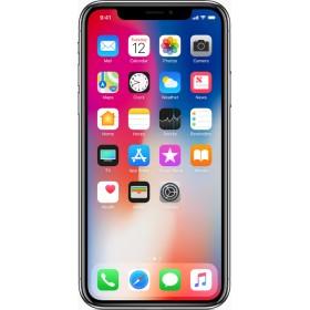 Apple iPhone X Gray 64GB
