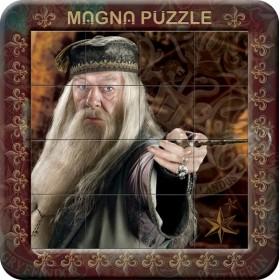 Τρισδιάστατο Μαγνητικό Πάζλ Χάρι Πότερ-OEM