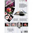 Olympia 9165 Φύλλα πλαστικοποίησης για Α4 Α5 Α6 και επαγγελματικές κάρτες 100 τμχ - OLYMPIA
