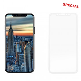 IDOL 1991 TEMPERED GLASS IPHONE XS/X 5.8